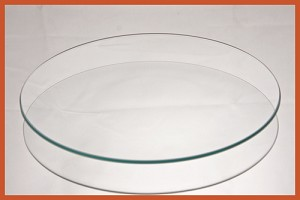 "8"" Round Bent Clear Glass Plate 3/16"