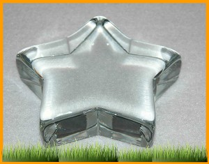 "4 1/2"" Star Crystal Paperweight"