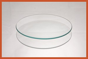 "2nds - 4"" Round Bent Clear Glass Plate 1/8"